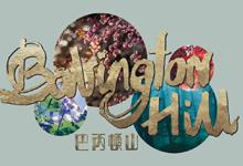 巴丙頓山 Babington Hill - 西半山巴丙頓道23號 半山區西部