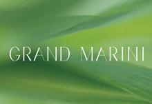 Grand Marini 將軍澳康城路1號 發展商:會德豐